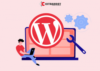 Plugin Wajib Ada di WordPress 2021