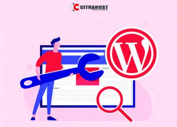 Memilih Tema WordPress Ramah SEO